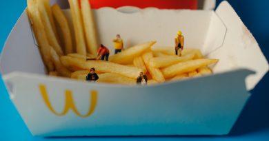 Boîte de frites